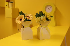 Vase Basic kraft carton