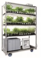 VegeledTM growing trolley