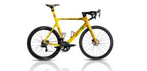 Giant Propel Sonderedition: Das Vincent van Gogh Aero-Rennrad